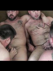 Hot Bears gay orgy